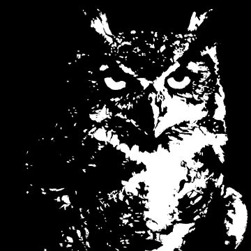 Owl by biev