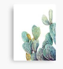 Watercolor cactus art Canvas Print