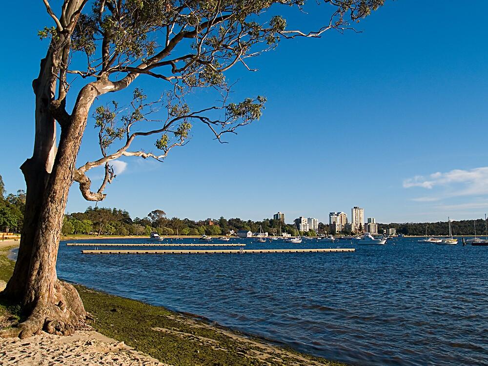 Crawley Bay, Perth Western Australia by Adrian Lord