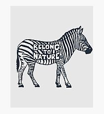 Vintage Belong to Nature Environmentalist Zebra Photographic Print