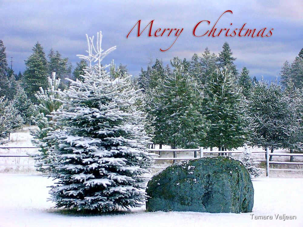 Merry Christmas Tree by Tamara Valjean