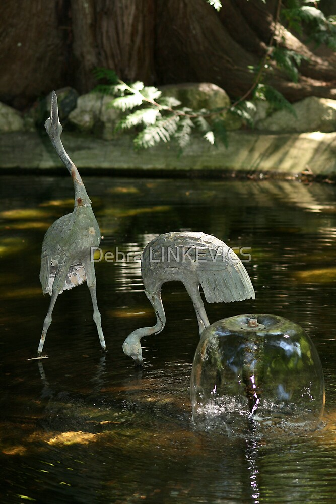 Water Feature by Debra LINKEVICS