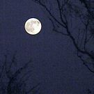 Full Moon Rising by R&PChristianDesign &Photography