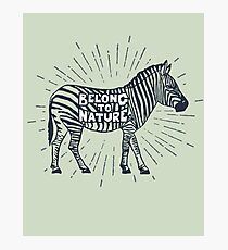 """Belong to Nature"" Vintage Environmentalist Zebra Photographic Print"