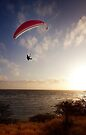 Sunset Paragliding  by Alex Preiss
