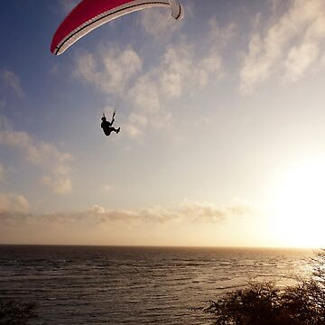 Sunset Paragliding  by alex4444
