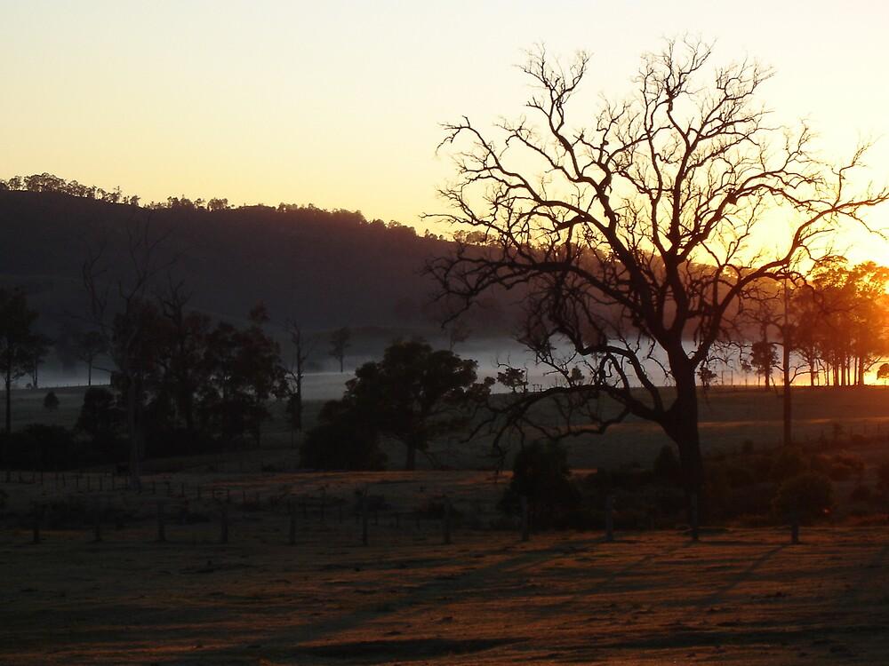 Sunrise by IslandBreeze