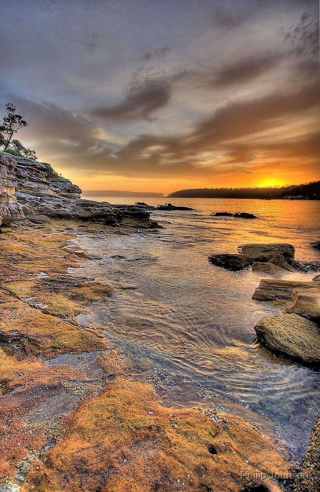 Sunrise Portrait - Balmoral Beach - The HDR Series by Philip Johnson