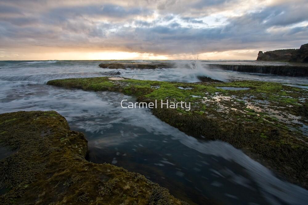 Tidal movement by Carmel Harty
