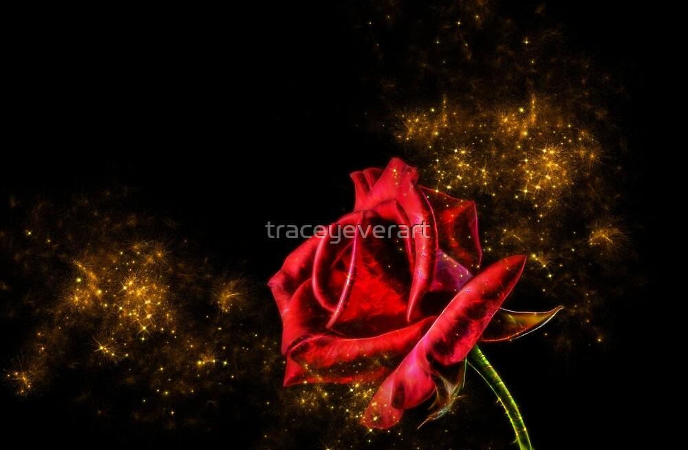 """Red Rose with Pixie Dust"" by traceyeverart 
