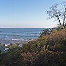 Newport - Rhode Island   Shore Line Views by Jack McCabe