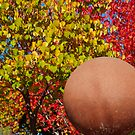 Fall Ball by aaronarroy