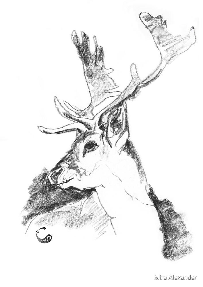 Hirsch, Kopf - Charcoal Animals von Mira Alexander