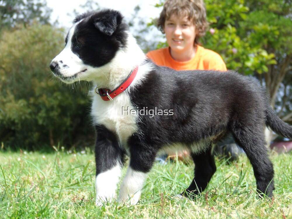 Boy & his Dog by Heidiglass