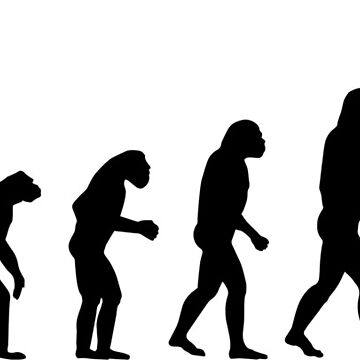 Evolution ? Too much tired to evolve! by Manikool