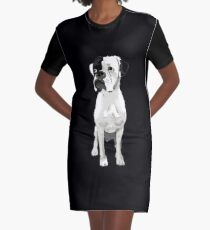 Boxer Graphic T-Shirt Dress