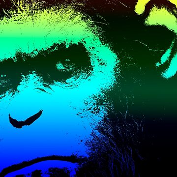 Dawn of the Planet of the Apes  by chris2766