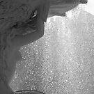 Aqua Dreaming by Emma  Wertheim