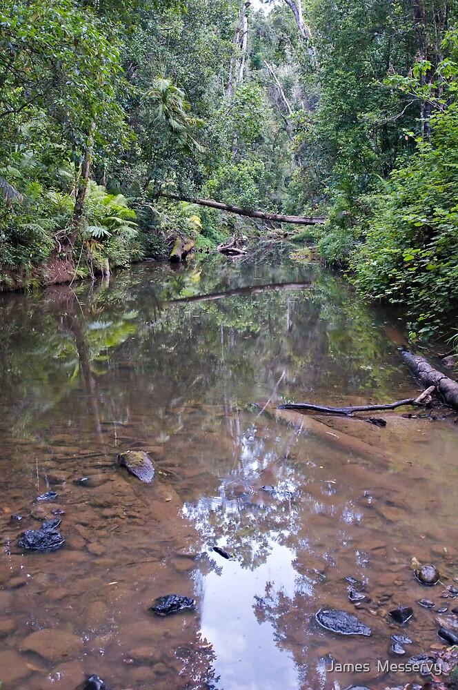 Creek Crossing by James  Messervy