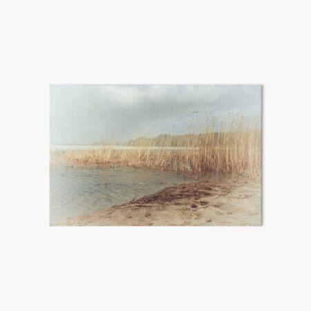Autumn beach Art Board Print