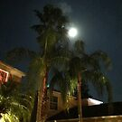 Moon over Tampa by Alicia  Summerville