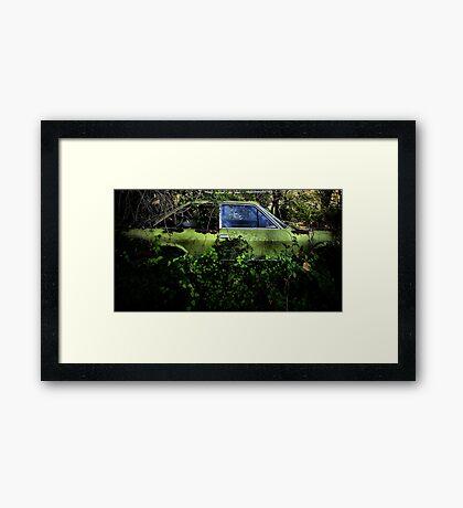 Preserved... Forever in my memory... Framed Print