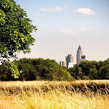 Frankfurt Skyline NiddaPark summer by marychaco