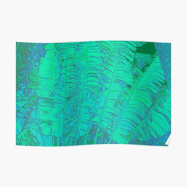 Feathered leaves Poster