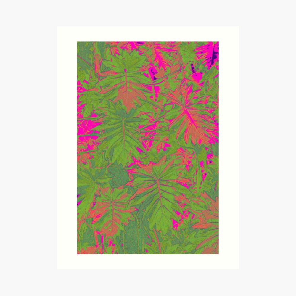 Hot Pink Nature Art Print