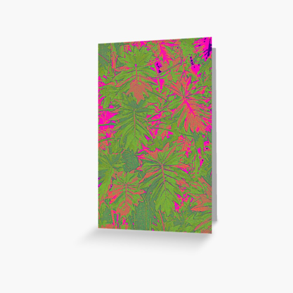 Hot Pink Nature Greeting Card