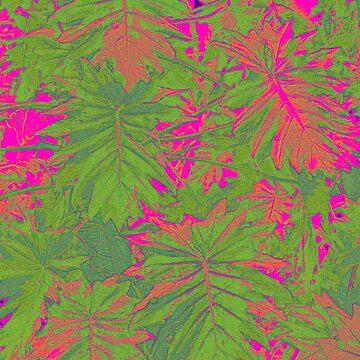 Hot Pink Nature by MagsArt