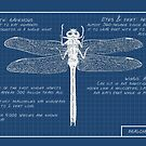 Nature's Blueprints (Dragonfly)(Charlie) by MissElaineous Designs