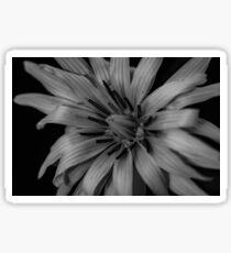 Black and white flower Sticker