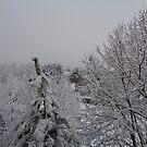 First snow by Ana Belaj