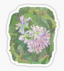 soapwort Sticker