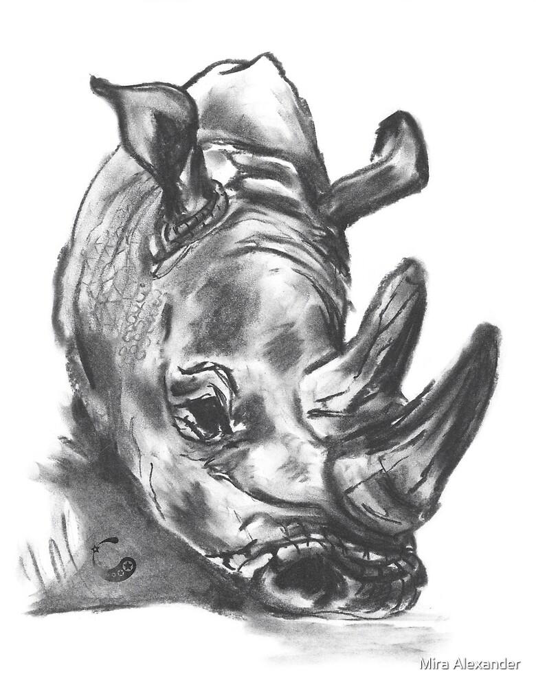 Nashorn - Charcoal Animals von Mira Alexander