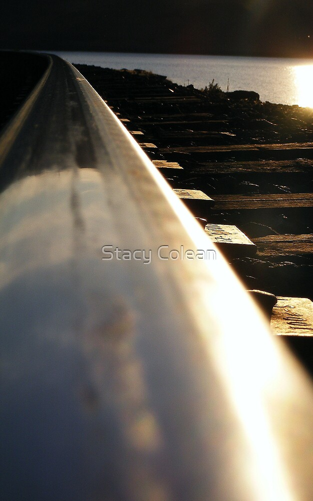On The Rail by Stacy Colean