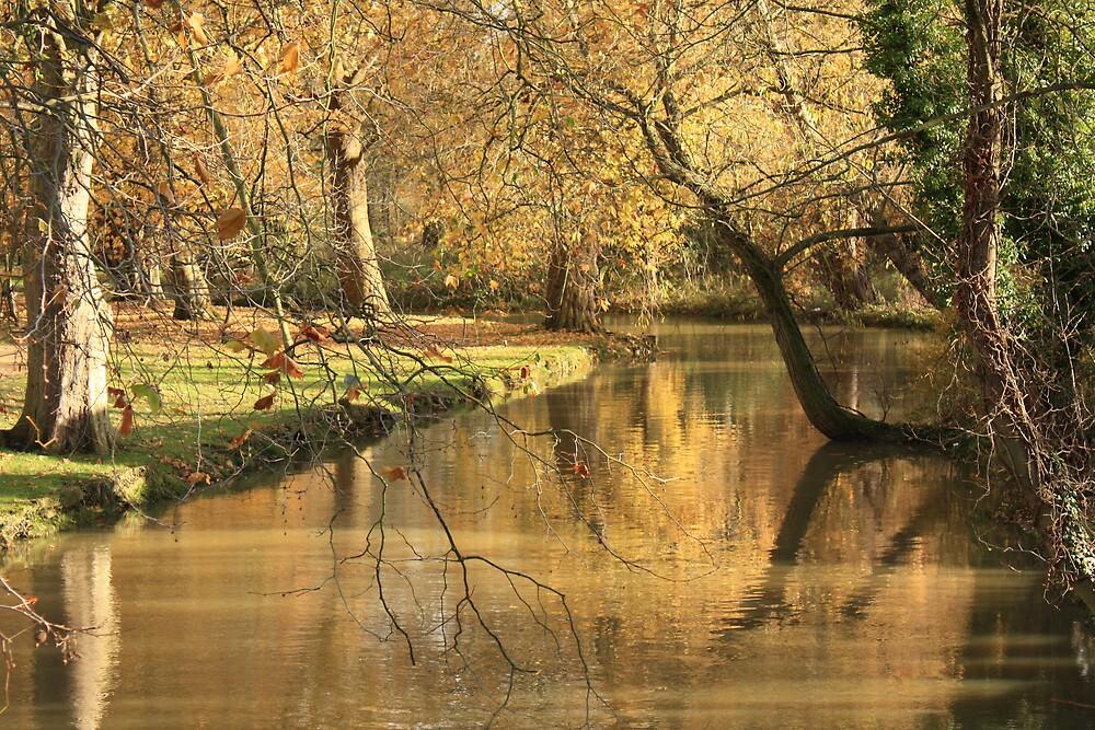Serenity by Graham Ettridge