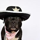 Deputy Dog! by Michelle McMahon