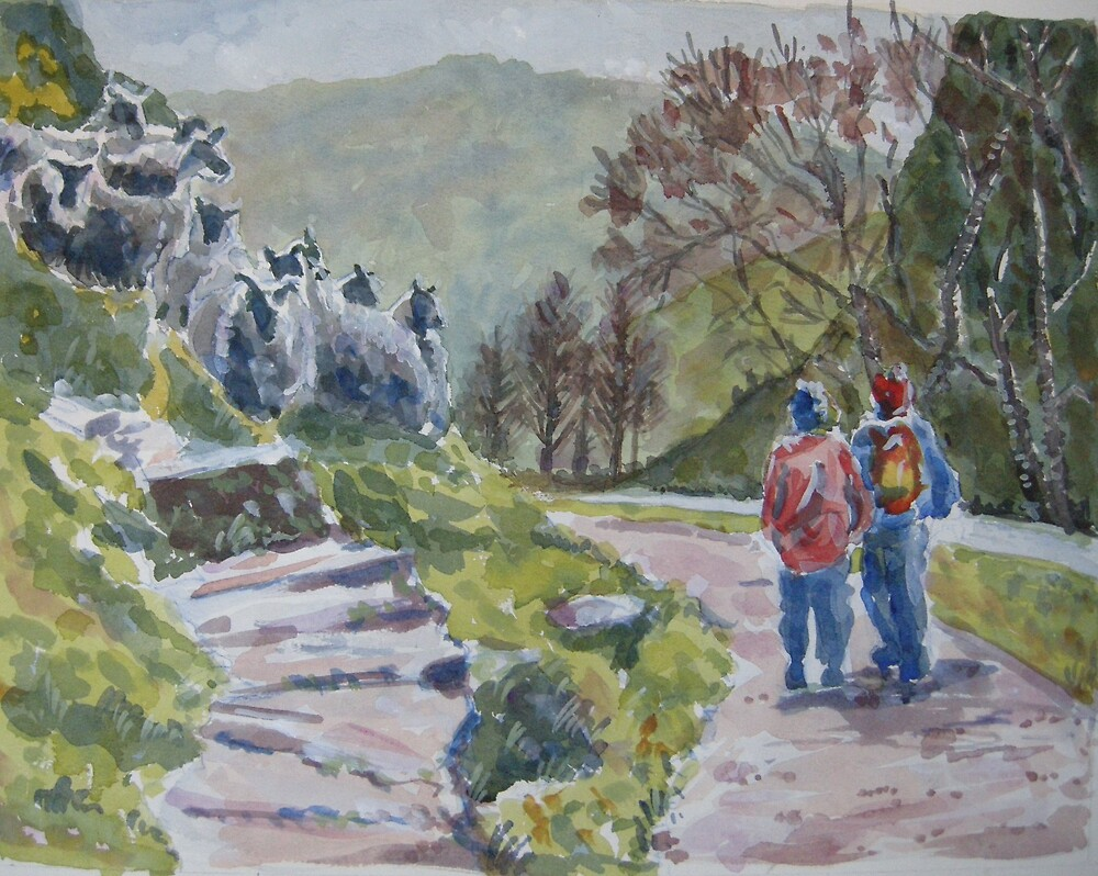 Walking through Dovedale by BRIAN HOLDEN