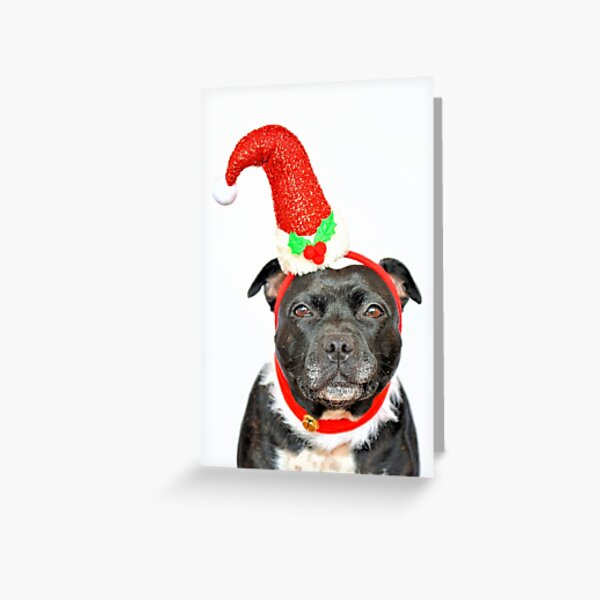 Merry Christmas.. Greeting Card