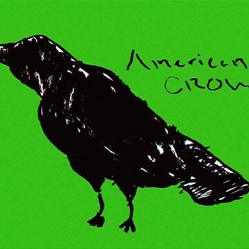 The American Crow by ChiharuFinn