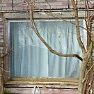 Curtains by Steven Godfrey