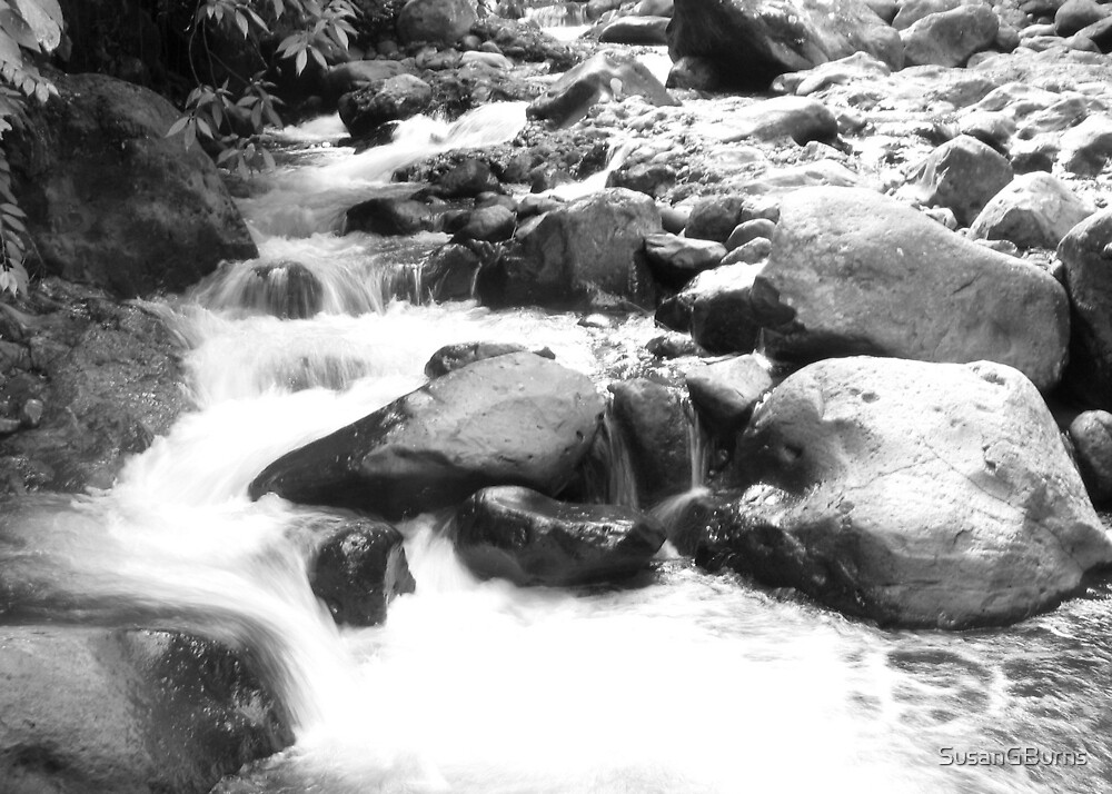 River - Black and White by SusanGBurns