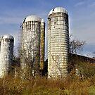 Forgotten Sentinels by Steven Godfrey