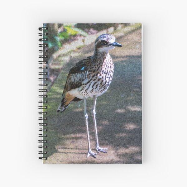 Bush stone-curlew Spiral Notebook