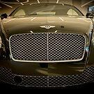 Bentley #6 by Benjamin Brauer
