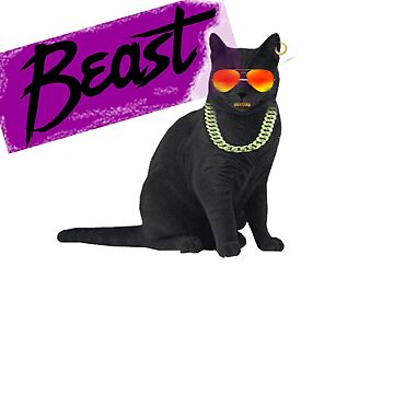 Beast Black cool cat by jama777