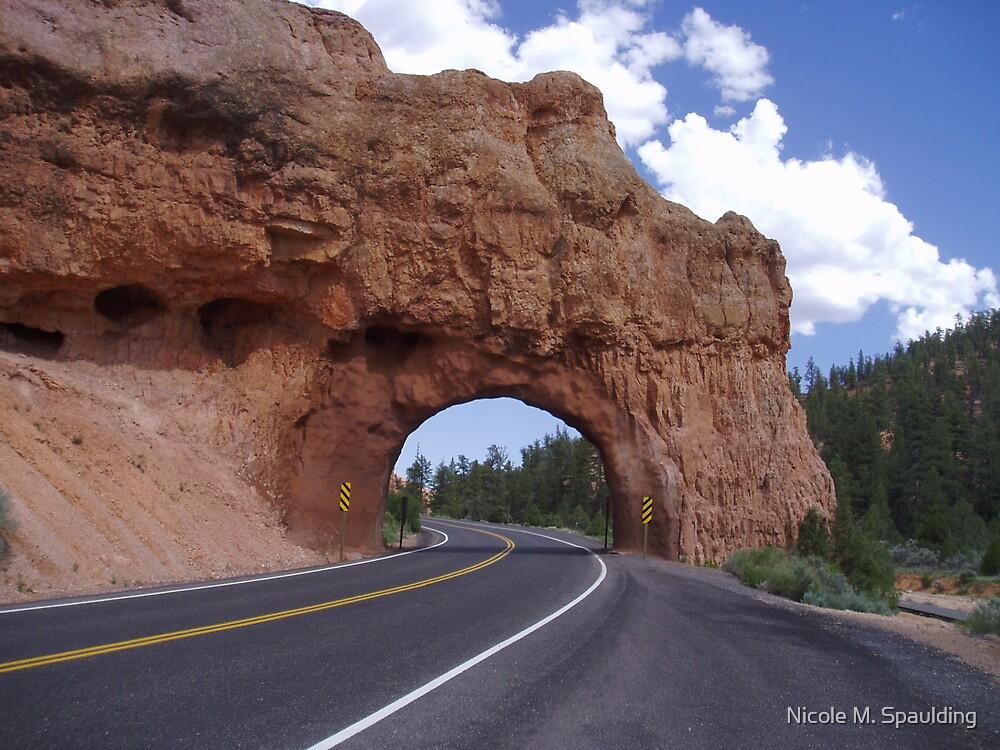 Road Tunnel by Nicole M. Spaulding