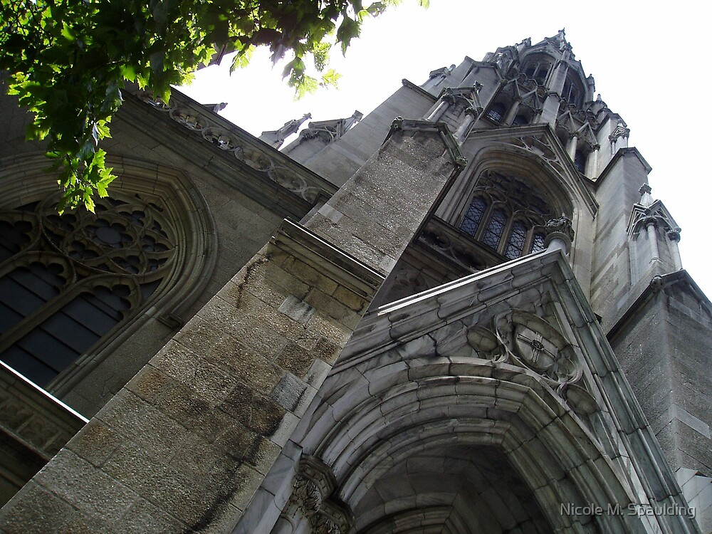 cathedral by Nicole M. Spaulding